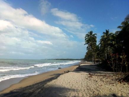 Playa de Palomino