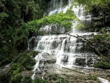 Cascadas de Chaguatá