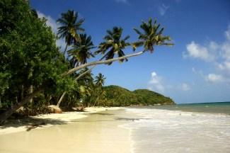 Playa de Manzanillo/ foto Matthew King