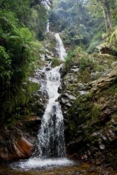 Cascada de los Venados/ foto Andres Gomez