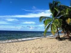 Playa del Francés