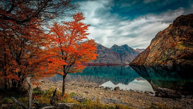 Reserva Nacional Lago Jeinimeni/ foto Ilustre Municipalidad de Chile Chico
