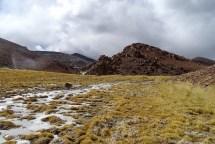 Parque Nacional Nevado Tres Cruces/ foto João Huenuqueo Marillan
