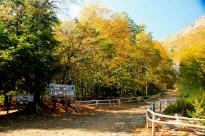 Reserva Nacional Altos del Lircay