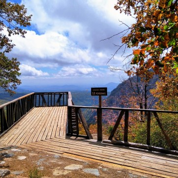 Reserva Nacional Altos del Lircay/ foto Carmen Saavedra Arias