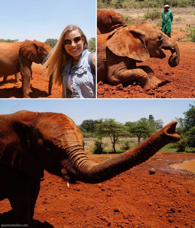orfanato de elefantes Nairobi