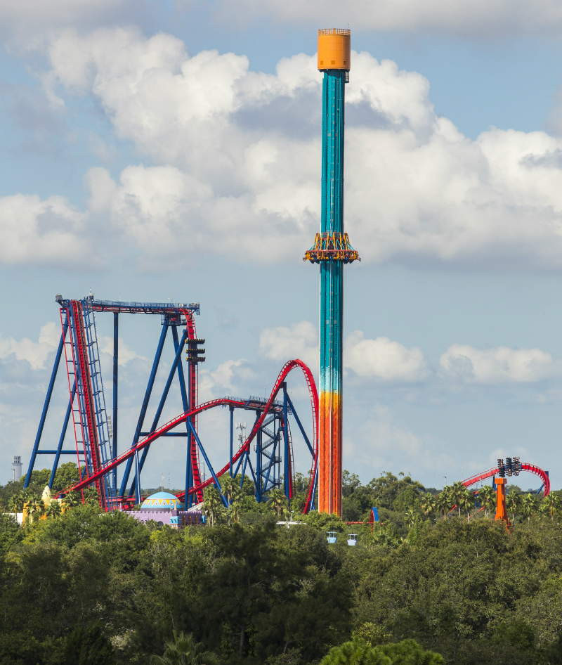 Busch Gardens Tampa com Falcon´s Fury e Sheikra