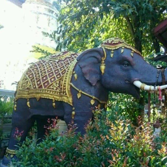 Sri Lanka es conocida como la isla de los elefantes.