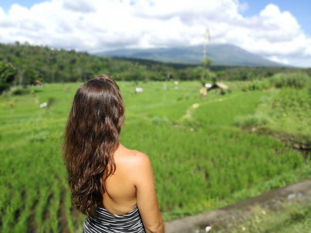 Las terrazas de arroz, típicas de Asia.