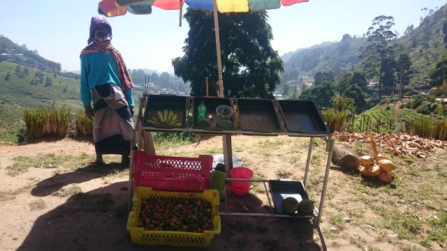 Vendedores de las montañas de Badulla