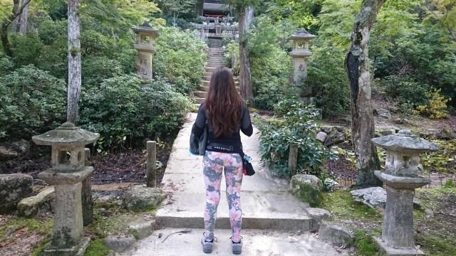 Las puertas Torii abundan en Miyajima camino a la cima del monte Misen.