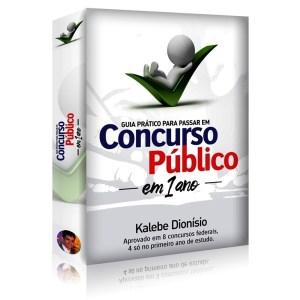 Guia Prático para Passar em Concurso Público em 1 Ano do Kalebe Dionísio
