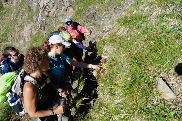 Excursiones con guía en el valle de Tena. Fede San Sebastian