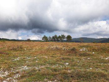 autunno in carso monte cocusso pese grozzana landa sommacco