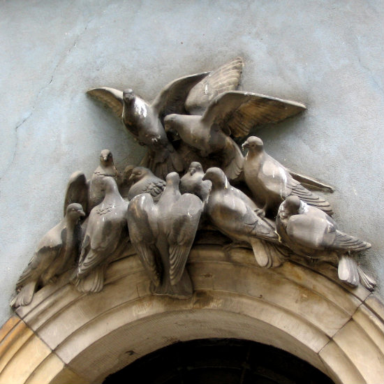 Piccioni sopra un portone di una casa nel centro storico.