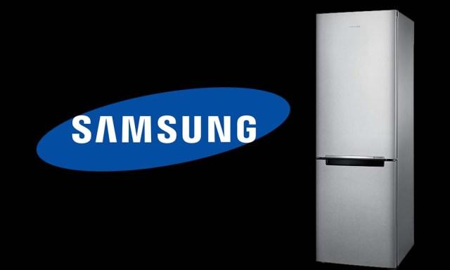 Samsung RB31HSR2DSA