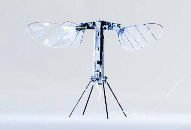 RoboBee X-Wing