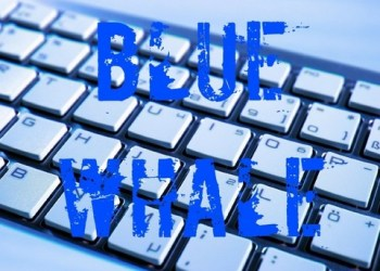 blue-whale-pericolo