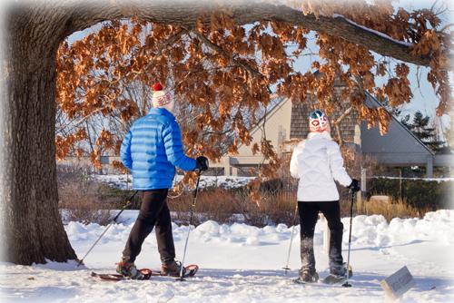 Arboretum Free January Twin Cities Moms
