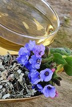 lungwort tea benefits