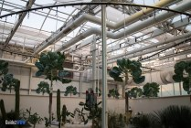 Hydroponics - Living with the Land - Epcot Attraction