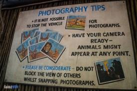 Photo Tips - Kilimanjaro Safaris - Animal Kingdom Attraction