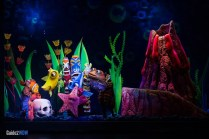Tank - Finding Nemo The Musical - Animal Kingdom Attraction