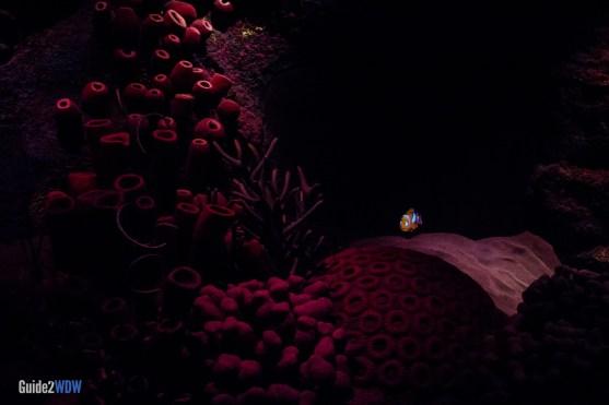Nemo - The Seas with Nemo and Friends - Epcot Attraction