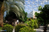 Plants - Living with the Land - Epcot Attraction