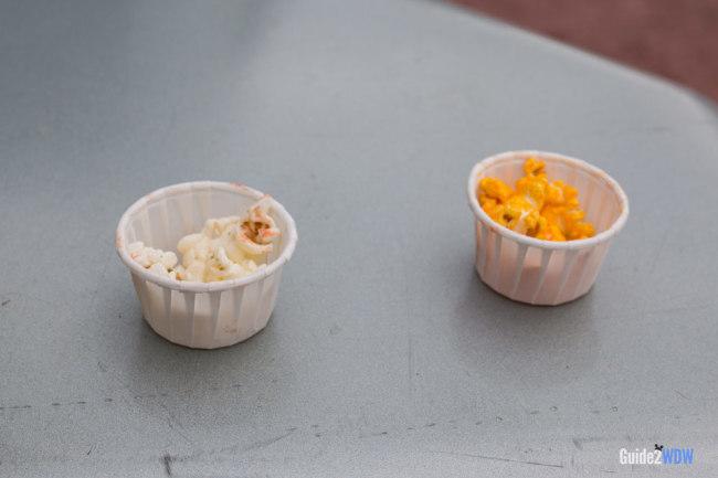 Samples - Epcot Imagination Popcorn Stand - Disney World Snack