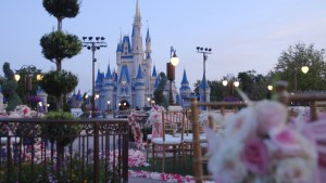 Wedding at Magic Kingdom