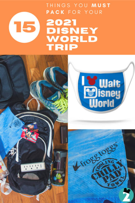 15 Things To Pack for Walt Disney World
