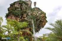 Pandora - Exterior Plant Life - The World of Avatar Preview - Disney's Animal Kingdom