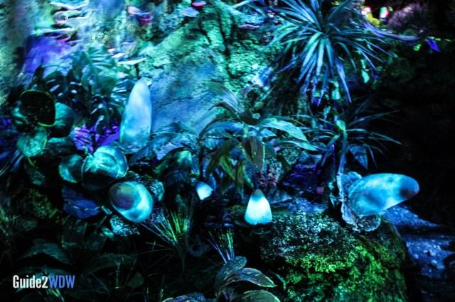 Flight of Passage Queue - Pandora - The World of Avatar Preview - Disney's Animal Kingdom