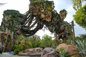 Pandora - Floating Mountains - The World of Avatar Preview - Disney's Animal Kingdom