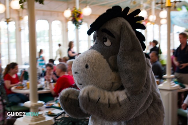 Eeyore - Crystal Palace Character Dining - Magic Kingdom Meet and Greet Character