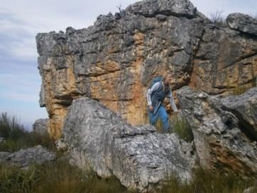 Cederberg boulders on the grassy vlakte.