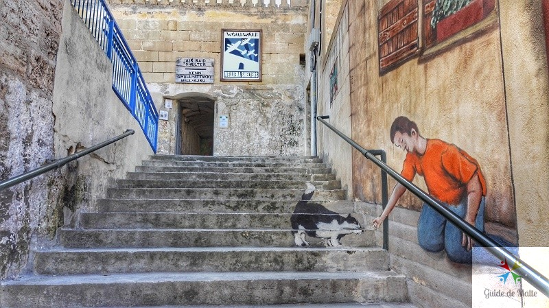 mellieha shelters abris seconde guerre mondiale malte