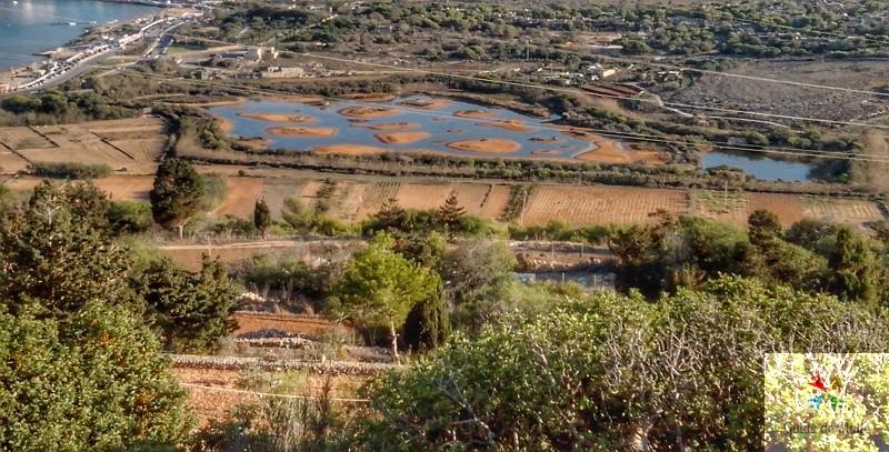 Ghadira nature Reserve malte