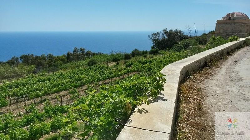 proche-de-la-chapelle malte rando vue mer bords de mer