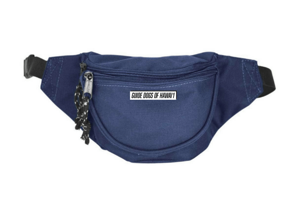 Stock image of navy blue waist pack.