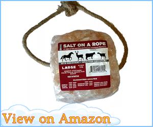 Large 7.3lb Himalayan Salt