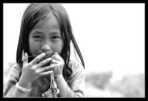 La-guimbarde-vietnamienne