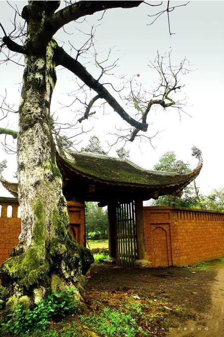 hung-yen