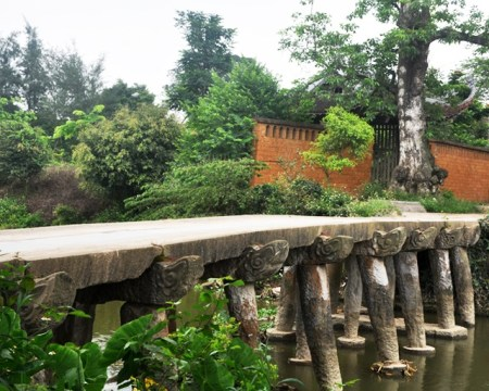 pagode-nom7