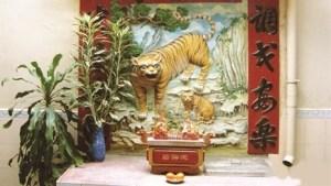 le-tigre-dans-la-culture-du-sud