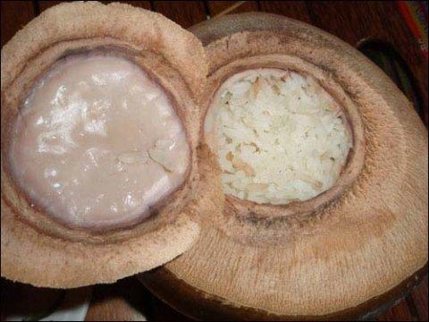 les cocotiers spécifiques « Xiem » sont coupés en deux pour se transformer en une vrai marmite