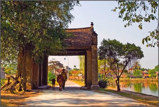le port mong phu
