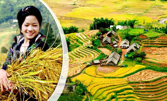 trek sapa nord vietnam blog voyage