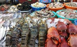 Top 5 fruits de mer à la baie d'Halong